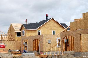 construction maison castor